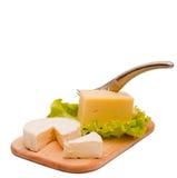 Conjunto del queso Fotos de archivo libres de regalías