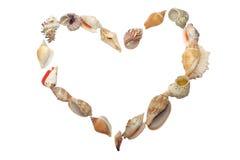 Conjunto del seashell bajo la forma de corazón Fotografía de archivo