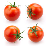 Conjunto del tomate aislado en blanco Fotos de archivo