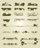 Conjunto del vector de elementos del diseño de la vendimia con las flores Imagen de archivo