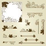 Conjunto del vector de elementos del diseño de la vendimia con las hojas Fotos de archivo