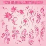 Conjunto del vector de elementos florales Fotografía de archivo
