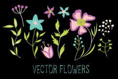 Conjunto del vector de flores Imágenes de archivo libres de regalías