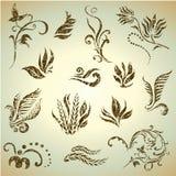 Conjunto del vector de hojas y de flores del grunge Fotos de archivo libres de regalías