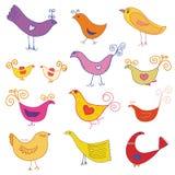 Conjunto del vector de pájaros lindos Fotografía de archivo libre de regalías