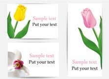 Conjunto del vector de tarjetas de felicitación con las flores Imagen de archivo