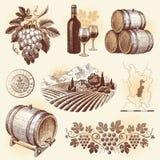 Conjunto drenado mano - vino y vinificación Imagenes de archivo