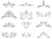 Conjunto - elementos del diseño floral Fotografía de archivo