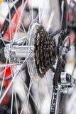Conjunto em mudança da velocidade da bicicleta Roda traseira Corrente de aço da bicicleta Close-up das engrenagens de transmissão Fotografia de Stock