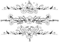 Conjunto floral con la capuchina stock de ilustración