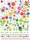 Conjunto floral del vector Foto de archivo libre de regalías