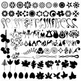 Conjunto floral del vector Fotos de archivo