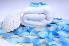 Conjunto, toalla y concha del balneario Imagenes de archivo