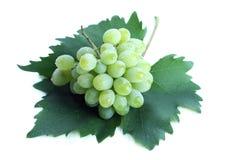 Conjunto verde da uva na folha fotos de stock royalty free