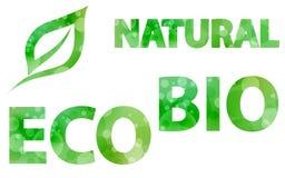 Conjunto verde de Eco Imagenes de archivo