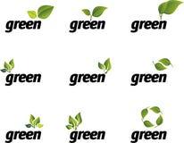 Conjunto verde del vector de la hoja. Imagen de archivo libre de regalías