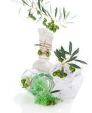 Conjunto verde oliva del balneario Fotografía de archivo libre de regalías
