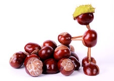 Conker figure Stock Photos