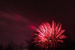 Conkers στα πυροτεχνήματα εθνικών δρυμός Στοκ Εικόνες