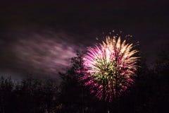 Conkers στα πυροτεχνήματα εθνικών δρυμός Στοκ φωτογραφίες με δικαίωμα ελεύθερης χρήσης