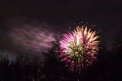 Conkers em Forest Fireworks nacional fotos de stock royalty free