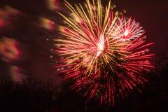 Conkers em Forest Fireworks nacional Fotografia de Stock