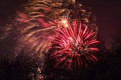 Conkers em Forest Fireworks nacional imagens de stock royalty free