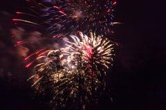 Conkers em Forest Fireworks nacional Fotografia de Stock Royalty Free