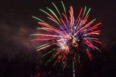Conkers en Forest Fireworks nacional fotografía de archivo libre de regalías