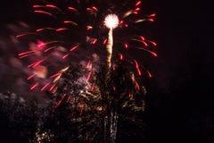 Conkers en Forest Fireworks nacional imagenes de archivo