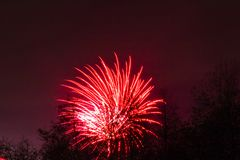 Conkers in Nationaal Forest Fireworks Stock Foto