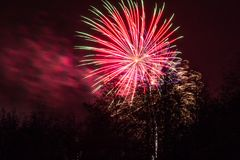 Conkers in Nationaal Forest Fireworks Royalty-vrije Stock Fotografie