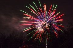 Conkers in nationalen Forest Fireworks lizenzfreie stockfotografie