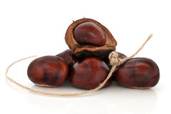 Conkers and String Royalty Free Stock Photo