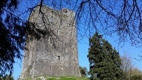 Conna slottConna län Cork Ireland royaltyfri fotografi