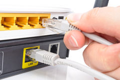 Connect the cable to the network switch Royalty Free Stock Photo