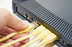 Connect the cable to the network switch Royalty Free Stock Photography