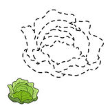 Connect the dots (cabbage) Stock Photo