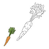 Connect the dots (carrot) Royalty Free Stock Images