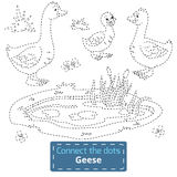 Connect the dots (farm animals set, goose family). Game for children: Connect the dots (farm animals set, goose family Vector Illustration
