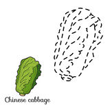 Connect the dots: fruits and vegetables (chinese cabbage) Stock Images