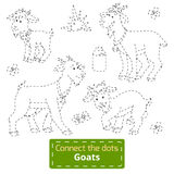 Connect the dots (goats family, farm animals) Stock Photography