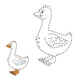 Connect the dots (goose) Stock Photo