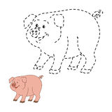 Connect the dots (pig). Game for children: Connect the dots (pig Stock Images