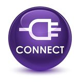 Connect glassy purple round button. Connect isolated on glassy purple round button abstract illustration Stock Image
