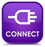 Connect special purple square button Royalty Free Stock Photos