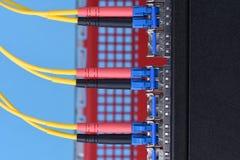 Connectec оптических кабелей к переключателю Стоковые Изображения RF
