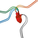 Connected artificial heart Stock Image
