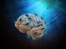 Connected brain. Human brain connected to cables and computer chips Stock Photos