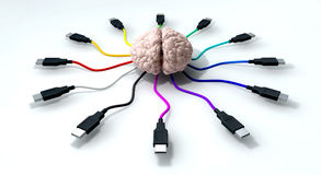 Connected Mind Royalty Free Stock Images